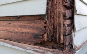 How Do I Stop Wood Rot & Dry Rot From Damaging My Home's Exterior?