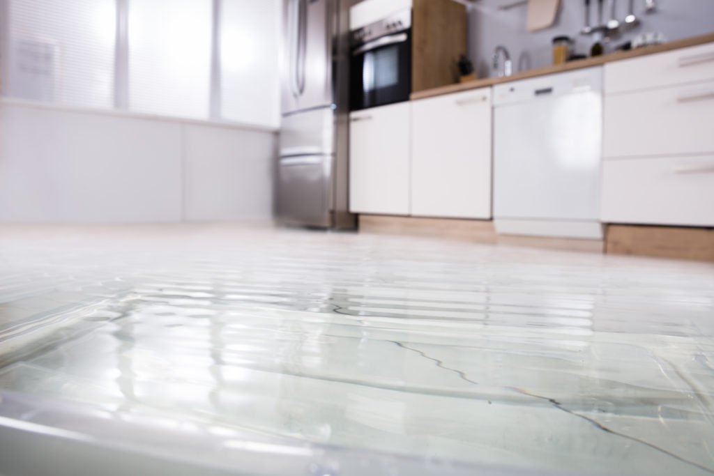All About Water Damage Restoration